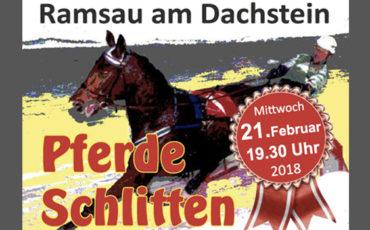 Pferdeschlittenrennen