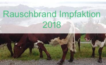 Rauschbrand Impfaktion 2018