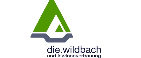 Wildbach und Lawinenverbauung